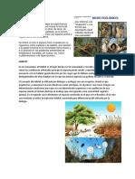 Nicho Ecológico + habitat