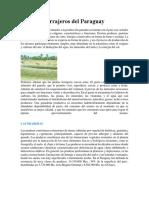 Recursos Forrajeros Del Paraguay