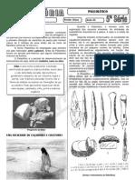 História - Pré-Vestibular Impacto - Período Paleolítico