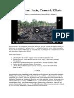 Tugas Pengetahuan Lingkungan Oleh Muhammad Rizki Pradana Tentang Deforestation