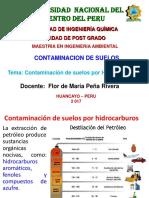 Contaminacion del suelo por hidrocarburos ii.pptx