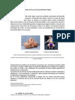 Desarrollo Motor Atipico PDF
