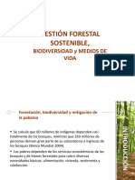 233005506 Gestion Forestal Sostenible Ppt