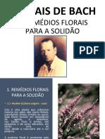 1 Remédios Florais Para a Solidão.pptx