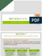 Seccion V y VI