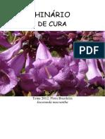 Hinario de Cura - Tablet.pdf