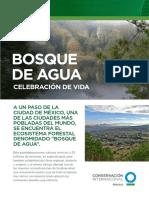 Bosque de Agua Biofoliar