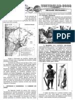 História do Brasil - Pré-Vestibular Impacto - Sociedade Mineiradora I