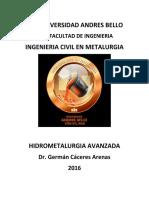 Caceres_German_Apuntes_curso_hidrometalurgia_avanzada.pdf
