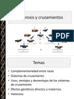 8-Heterosis-y-cruzamiento.pptx