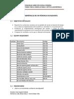 Guias de Laboratorio 2015.pdf