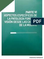 Cap 36 accidentes por arma de fuego.pdf