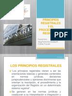 Principios Registrales y Procedimiento Registral
