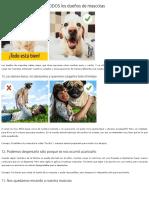 13 Errores Que Cometen TODOS Los Duegnos de Mascotas