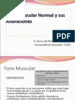 clase12tonomuscularnormalysusalteraciones-110328232920-phpapp02