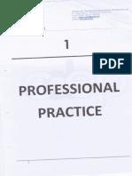 01 Professional Practice
