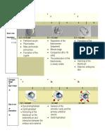 Anatomy Embryo Development Stages - Diagramatic Timeline 3 Proper