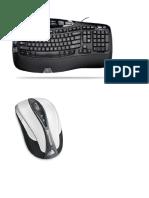 Partes de La Computadora Para Descargar