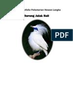Makalah Burung Jalak Bali