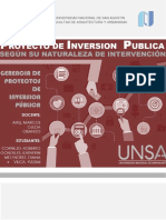 Pip Segun Naturaleza de Intervencion