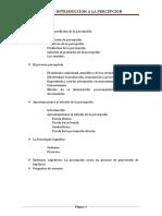 TEMA 1 INTRODUCCION A LA PERCEPCION.docx