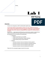 Juniper Lab1 BGP Exercise BGP Peering.pdf