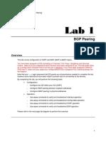 Juniper Lab1 BGP Exercise BGP Peering.pdf