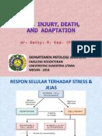 01. Cell Injury (FKG, Juni 2016)
