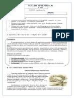 Guía n° 7