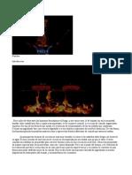 ApellidoNombre-ExamenWord-V4