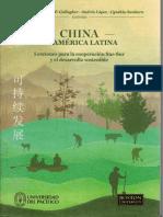 Ray Gallagher - China en America Latina