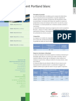 tf_-_ciment_portland_blanc_cem_i.pdf