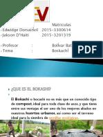 Presentación1 Edwidge bokachi