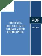 Proyecto Producción de Forraje Verde Hidropónico
