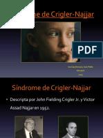 sindromedecrigler-najjar-