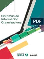 Actividades TP 3 Sistemas de Informaci-n Organizacional