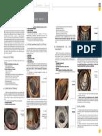 Fallas Mecanicas en Motores.pdf