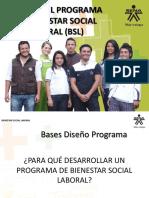 Base Para Diseñar Programas de Bienestar