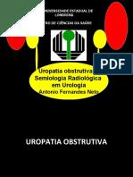 Uropatia Obstrutiva e Semiologia Radiológica em Urologia