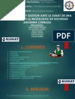 sunat.pptx