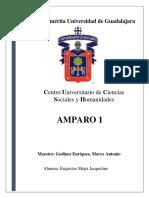 Indice Amparo