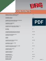 B.G.R. s.r.l. copia.pdf