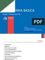 Ergonomia Básica.ppt