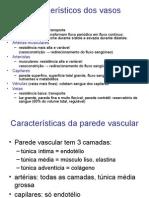 aula_microcirculação