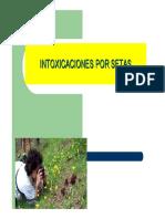 intoxicaciones_setas