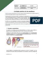 Tema 9. Patología quística de los maxilares.pdf