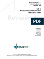 FOE5 - Transporte Planta de Gas Malvinas - SM3