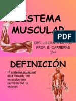 sistema-muscular-1204687836174898-3