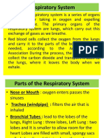 Respiratory Deases