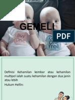 gemeli 1.pptx